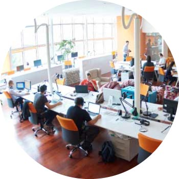 picture of digital marketers working inside a local seo agency's office